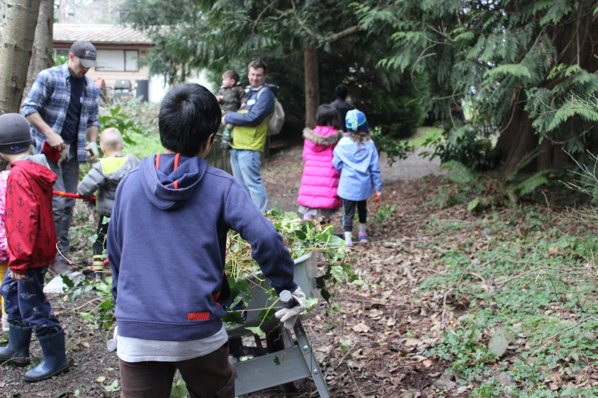 Removing invasive plants at local park