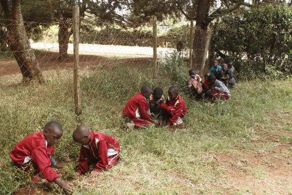 Tree planting on Hand Washing Day 2015, hosted by Global Peace Foundation Kenya