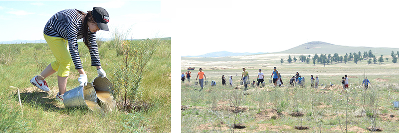 My Club Mongolia sets out to water 8,000 trees.