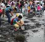 Coastal Clean Up in Manila, Philippines 2016