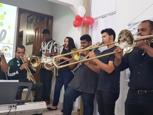 Brass and Woodwind Section